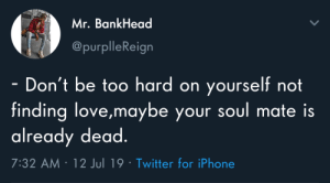 Meirl: Mr. BankHead  @purplleReign  Don't be too hard on yourself not  finding love,maybe your soul mate is  already dead.  7:32 AM 12 Jul 19 Twitter for iPhone Meirl