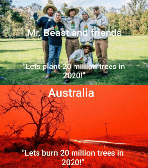 "Crikey! Fuck me dead: Mr. Beast and friends  ""Lets plant 20 million trees in  2020!""  Australia  ""Lets burn 20 million trees in  2020!"" Crikey! Fuck me dead"
