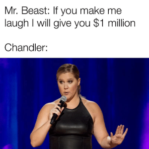 Peace, Rest, and Beast: Mr. Beast: If you make me  laugh I will give you $1 million  Chandler: Rest in peace Chandler