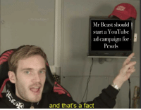 Pewds: Mr Beast should  start a Youlube  ad campaign for  Pewds  and that's a fact