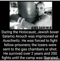 the losers: @MR DARKWEB  During the Holocaust, Jewish boxer  Salamo Arouch was imprisoned at  Auschwitz. He was forced to fight  fellow prisoners; the losers were  sent to the gas chambers or shot.  He survived over 2 years and 200  fights until the camp was liberated
