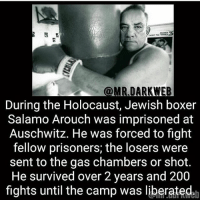 Damn ~Matt: @MR DARKWEB  During the Holocaust, Jewish boxer  Salamo Arouch was imprisoned at  Auschwitz. He was forced to fight  fellow prisoners; the losers were  sent to the gas chambers or shot.  He survived over 2 years and 200  fights until the camp was liberatedah Damn ~Matt