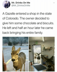 Family, Memes, and Chocolate: Mr. Drinks On Me  @Mr_DrinksOnMe  A Gazelle entered a shop in the state  of Colorado. The owner decided to  give him some chocolate and biscuits.  He left and half an hour later he came  back bringing his entire family. 🤣The Gazelle has the right idea