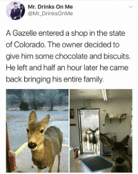 Family, Memes, and Chocolate: Mr. Drinks On Me  @Mr_DrinksOnMe  A Gazelle entered a shop in the state  of Colorado. The owner decided to  give him some chocolate and biscuits.  He left and half an hour later he came  back bringing his entire family. See the way they stood at the door like they are waiting for permission to enter • Follow @savagememesss for more posts daily