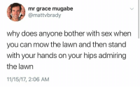 mugabe: mr grace mugabe  @mattvbrady  why does anyone bother with sex when  you can mow the lawn and then stand  with your hands on your hips admiring  the lawn  11/15/17, 2:06 AM