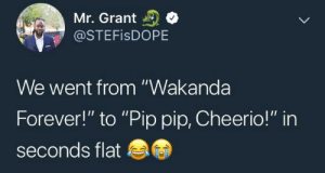 """Chadwick Boseman is somewhere celebrating. by BasedGodWiggins FOLLOW HERE 4 MORE MEMES.: Mr. Grant  @STEFISDOPE  We went from """"Wakanda  Forever!"""" to """"Pip pip, Cheerio!"""" in  seconds flat Chadwick Boseman is somewhere celebrating. by BasedGodWiggins FOLLOW HERE 4 MORE MEMES."""