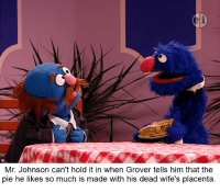 """""""I probably should've told you those meatballs you had before were the foetuses. Congratulations to the dead triplets, dad!"""": Mr. Johnson can't hold it in When Grover tells him that the  pie he likes so much is made with his dead wife's placenta. """"I probably should've told you those meatballs you had before were the foetuses. Congratulations to the dead triplets, dad!"""""""