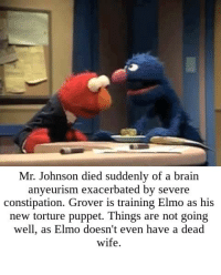 """""""What's in it? The remains of your favorite Home Ec teacher! Wait, this isn't working"""": Mr. Johnson died suddenly of a brain  anyeurism exacerbated by severe  constipation. Grover is training Elmo as his  new torture puppet. Things are not goin;g  well, as Elmo doesn't even have a dead  wife. """"What's in it? The remains of your favorite Home Ec teacher! Wait, this isn't working"""""""