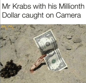 Mr. Krabs, SpongeBob, and Camera: Mr Krabs with his Millionth  Dollar caught on Camera How rich is Mr Krabs Anyways