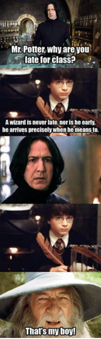 Dank, 🤖, and Epic: Mr Potter why are you  late for class?  A Wizard is never late, noris he early.  he arrives precisely when he means to.  That's my boy! I laughed so hard. They should really do a crossover. That'd be EPIC! http://9gag.com/gag/aNZyKew?ref=fbp