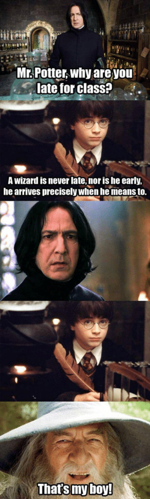 lolzandtrollz:  Wizards Have Always Perfect Timing: Mr. Potter why are you  late for class?!  A wizard is never late, nor is he early,  he arrives precisely when he means to. lolzandtrollz:  Wizards Have Always Perfect Timing