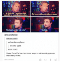 stand up comedian: Mr. Radcliffe, I heard you once  Tell me one joke and make me laugh  wanted to be a stand up comedian...  What's green and eats nuts?  Syphilis  rembrandtswife:  rainne cassidy  animentalcosplayer:  OH MY GOD.  I AM DEAD  Daniel Radcliffe has become a way more interesting person  than Harry Potter.  285,238 notes