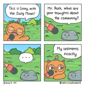 A Solid Comic [OC]: Mr. Rock, what are  This is Ginny, with  the Daily Mews!  your thoughts about  the community?  My sediments  еxactly  @cotandcatcomics  Susie Yi 4I  СМ  CM A Solid Comic [OC]