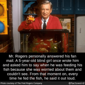 awesomacious:  Wholesome Mr Rogers: Mr. Rogers personally answered his fan  mail. A 5-year-old blind girl once wrote him  and asked him to say when he was feeding his  fish because she was worried about them and  couldn't see. From that moment on, every  time he fed the fish, he said it out loud.  @factsweird  Photo courtesy of The Fred Rogers Company awesomacious:  Wholesome Mr Rogers