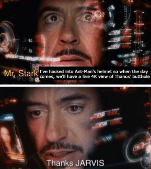 Good looking out Jarvis by bradleyhellendoorn MORE MEMES: Mr Stark te hacke to Ant-Man's helmet so when tueday  comes, we'll have a live 4K view of Thanos' butthole  Thanks JARVIS Good looking out Jarvis by bradleyhellendoorn MORE MEMES