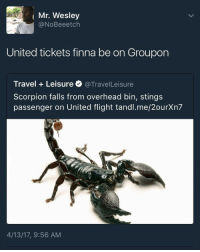 Blackpeopletwitter, Frozen, and Flight: ( Mr. Wesley  @NoBeeetch  United tickets finna be on Groupon  Travel Leisure @TravelLeisure  Scorpion falls from overhead bin, stings  passenger on United flight tandl.me/2ourXn7  4/13/17, 9:56 AM <p>Tickets cheaper than some frozen yogurt (via /r/BlackPeopleTwitter)</p>