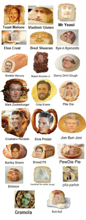 saw too much inconsistency with the recent bread memes so here's me trying to bring them all together into one: Mr Yeast  Toast Malone  Vladimir Gluten  Bred Sheeran Rye-n Ryenolds  Elon Crust  Breddie Mercury  Danny DeVi-Dough  Robert Brownie Jr  Pita Ora  Mark Zuckerburger  Crisp Evans  Jon Bun Jovi  Crustiano Ronaldo  Elvis Pretzel  PewDie Pie  Bread Pit  Barley Sheen  Gandloaf the white bread  pita parker  Brionce  Gramola  Rick Roll saw too much inconsistency with the recent bread memes so here's me trying to bring them all together into one