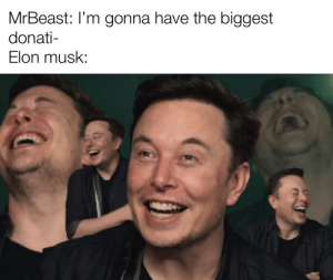So anyway I started planting: MrBeast: I'm gonna have the biggest  donati-  Elon musk: So anyway I started planting