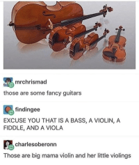 Clique, Jealous, and Memes: mrchrismad  those are some fancy guitars  findingee  EXCUSE YOU THAT IS A BASS, A VIOLIN, A  FIDDLE, AND A VIOLA  Charlesoberonn  Those are big mama violin and her little violings Also all these pretty dresses are making me so jealous marvel fandom textpost funnypost tumblr clean doctorwho hungergames mockingjay text jeremyrenner hawkeye avengers tumblrpost meme tumblr bandom patd panicatthedisco brendonurie clean funny funnypost music bands falloutboy clique top twentyonepilots memes joshdun tylerjoseph