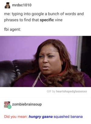 Fbi, Gif, and Google: mrdsc1010  me: typing into google a bunch of words and  phrases to find that specific vine  fbi agent:  GIF by heartshapedglassesxo  zombiebrainsoup  GAY  Did you mean: hungry gaana squashed banana That face tho lmao