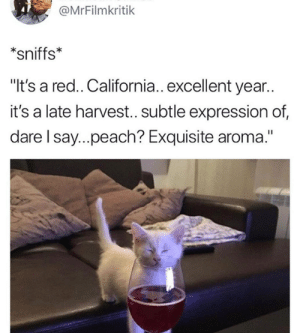 "Memes, California, and 🤖: @MrFilmkritik  sniffs*  ""It's a red.. California.. excellent year..  it's a late harvest.. subtle expression of  dare I say..peach? Exquisite aroma."""