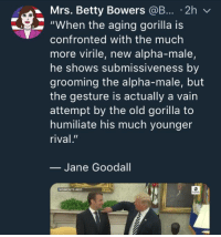"Best, Girl, and Image: Mrs. Betty Bowers @B... 2h v  ""When the aging gorilla is  confronted with the much  more virile, new alpha-male,  he shows submissiveness by  grooming the alpha-male, but  the gesture is actually a vain  attempt by the old gorilla to  humiliate his much younger  rival.""  - Jane Goodall  MOMENTS AGO Bahahaha!!  Image from Girl Du Jour via Mrs. Betty Bowers, America's Best Christian"
