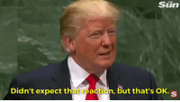 MRW I see a reaction gif I didn't expect, but it's ok: MRW I see a reaction gif I didn't expect, but it's ok