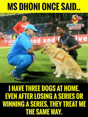 Dogs, Home, and Indianpeoplefacebook: MS DHONI ONCE SAID  Pg3 KILLERDI  AUGHING  nd and  ve  ent Ultr  I HAVE THREE DOGS AT HOME.  EVEN AFTER LOSING A SERIES OR  WINNING A SERIES, THEY TREAT ME  THE SAME WAY #MSDhoni