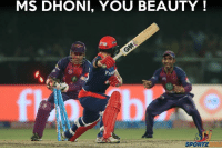 Memes, 🤖, and Dhoni: MS DHONI, YOU BEAUTY  SPORTZ That Stumping by MS Dhoni _/\_