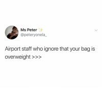 Funny, The Real, and Who: Ms Peter  @peteryonela_  Airport staff who ignore that your bag is  overweiaht >>> The real MVPs 🙏🏼