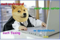 ~Mrs.Doge: much professional  such faxing  ock option  so spreadsheets ~Mrs.Doge