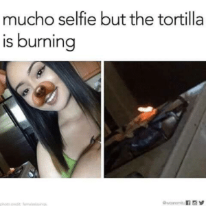 Lit, Selfie, and Photo: mucho selfie but the tortilla  is burning  photo cet mlmlayi La tortilla is literally lit 🔥🔥🔥