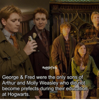 """qotd : try to comment """"prefect"""" with your eyes closed😱: mug9  eorge & Fred were the only sons o  Arthur and Molly Weasley who did mot  become prefects during their education  at Hogwarts qotd : try to comment """"prefect"""" with your eyes closed😱"""