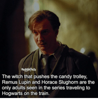 "qotd : comment ""😏"" if you knew this and ""😱"" if you didn't. fc: 94,1k: muggle facts  The witch that pushes the candy trolley,  Remus Lupin and Horace Slughorn are the  only adults seen in the series traveling to  Hogwarts on the train qotd : comment ""😏"" if you knew this and ""😱"" if you didn't. fc: 94,1k"