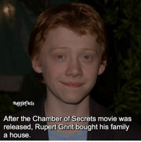 """qotd : comment """"😏"""" if you knew this and """"😱"""" if you didn't. fc: 95,2k: mugglefacts  After the Chamber of Secrets movie was  released, Rupert Grint bought his family  a house qotd : comment """"😏"""" if you knew this and """"😱"""" if you didn't. fc: 95,2k"""