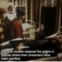 "qotd : comment ""😏"" if you knew this and ""😱"" if you didn't. Follow my other account: @mypotterposts: mugglefacts  Full-size models replaced the actors in  scenes where their characters have  been petrified qotd : comment ""😏"" if you knew this and ""😱"" if you didn't. Follow my other account: @mypotterposts"