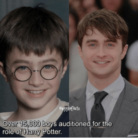 """Harry Potter, Memes, and France: mugglefacts  over 15 000