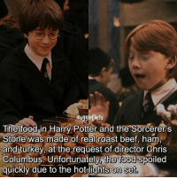"qotd : try to comment ""Hogwarts"" with your eyes closed😱: mugglefacts  The foodin Harry Potter and the Sorcerer's  Stone was made of real roast beef, ham  and turkey, at the request of director Chris  Columbus. Unfortunately, the food spoiled  quickly due to the hot lights on set qotd : try to comment ""Hogwarts"" with your eyes closed😱"