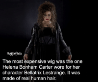 """Memes, Wigs, and Helena Bonham Carter: mugglefacts  The most expensive Wig Was the one  Helena Bonham Carter wore for her  character Bellatrix Lestrange. It was  made of real human hair. qotd : comment """"😏"""" if you knew this and """"😱"""" if you didn't. fc: 85,1k"""