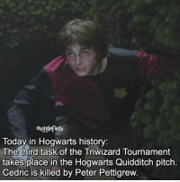 qotd : what's your favourite task from the triwizard tournament?: mugglefacts  Today in Hogwarts history:  The third task of the Triwizard Tournament  takes place in the Hogwarts Quidditch pitch  Cedric is killed by Peter Pettigrew qotd : what's your favourite task from the triwizard tournament?