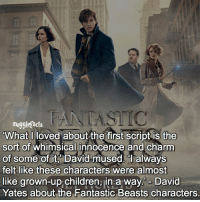 qotd : favorite fantastic beasts character?: mugglefacts  What I loved about the first script is the  sort of whimsical innocence and charm  of some of it, David mused. always  felt like these characters were almost  like grown-up children, in a way David  Yates about the Fantastic Beasts characters. qotd : favorite fantastic beasts character?