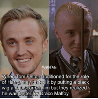 """Memes, Black, and Okay: mugglefacts  When Tom Felton auditioned for the role  of Harry, they tested it by putting a black  wig and ascar on him but they realized  he was better for Draco Malfoy. qotd : comment """"😏"""" if you knew this and """"😱"""" if you didn't. Okay just to be clear: he auditioned for Ron and Harry but they realized he suited Draco better so het got the role of Draco Follow my other account: @thehpfilms"""