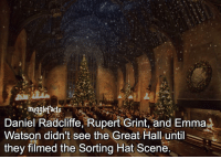 "Daniel Radcliffe, Emma Watson, and Memes: mugglefocts  Daniel Radcliffe, Rupert Grint, and Emma  Watson didn't see the Great Hall until  they filmed the Sorting Hat Scene. qotd : comment ""😏"" if you knew this and ""😱"" if you didn't. fc: 79,3k"