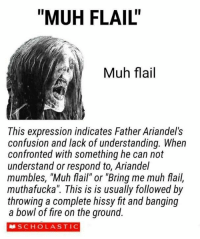 """Dank, Fire, and Senpai: """"MUH FLAIL""""  Muh flail  This expression indicates Father Ariandel's  confusion and lack of understanding. When  confronted with something he can not  understand or respond to, Ariandel  mumbles, """"Muh flail"""" or """"Bring me muh flail,  muthafucka"""". This is is usually followed by  throwing a complete hissy fit and banging  a bowl of fire on the ground.  SCHOLASTIC A little gem from the Gutter group ~Solaire-senpai"""