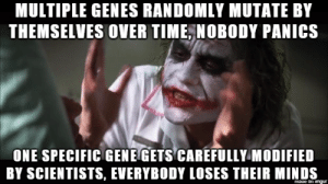 People who oppose GMOs: MULTIPLE GENES RANDOMLY MUTATE BY  THEMSELVES OVER TIME, NOBODY PANICS  ONE SPECIFIC GENE GETS CAREFULLY MODIFIED  BY SCIENTISTS, EVERYBODY LOSES THEIR MINDS  mage on imqur People who oppose GMOs