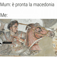 Mega, Macedonia, and Italian (Language): Mum: pronta la macedonia  Me  IL SUPERUOVO Dedicata a Giovanni Verbicaro. -Mega