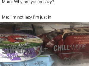 Chill, Lazy, and Irl: Mum: Why are you so lazy?  Me: I'm not lazy I'm just in  L+ CHILL MODE  495  +3 C  1 me_irl