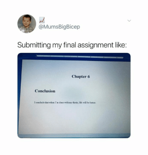 Fact 😂: @MumsBigBicep  Submitting my final assignment like:  Chapter 6  Conclusion  I conclude that when I'm done with my thesis, life will be better. Fact 😂