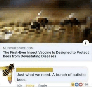 srsfunny:  like, we're in for it now, Scoobs: MUNCHIES.VICE.COM  The First-Ever Insect Vaccine Is Designed to Protect  Bees from Devastating Diseases  Just what we need. A bunch of autistic  bees.  O156  Haha  Reply  10h srsfunny:  like, we're in for it now, Scoobs