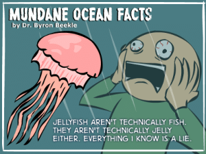 Facts, Fish, and Ocean: MUNDANE OCEAN FACTS  by Dr. Byron Beekle  UELLYFISH AREN'T TECHNICALLY FISH.  THEY AREN'T TECHNICALLY JELLY  EITHER. EVERYTHING I KNOW IS A LIE.